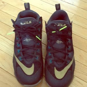 Nike Lebron XII 12 Low